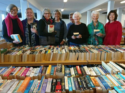 Hamilton book fair committee