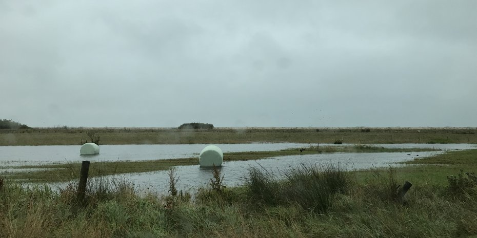 Southland Floods